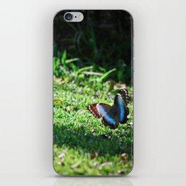 Blue butterfly iPhone Skin