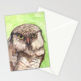 Northern Hawk Owl Stationery Cards