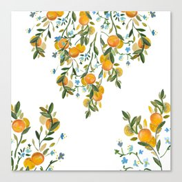 A Bit of Spring and Sushine Trailing Oranges Canvas Print