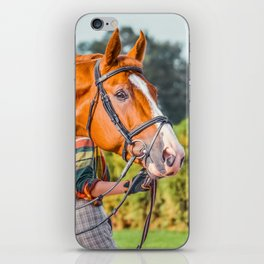 Horse head photo closeup iPhone Skin