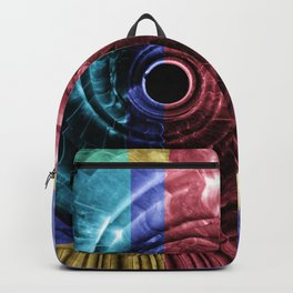 architecture art Backpack