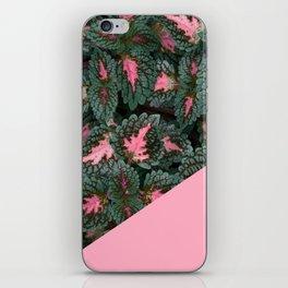 Pink on Coleus Plant iPhone Skin