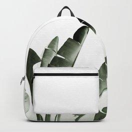 Traveler palm Backpack