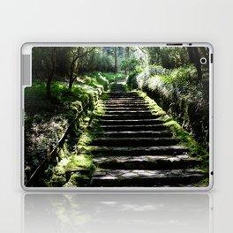 Rikyuu Road Laptop & iPad Skin
