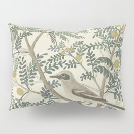 Robert Jacob Gordon - Acacia karroo Hayne or Vachellia karroo - 1777-1786 Pillow Sham