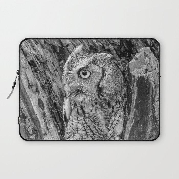 Echo the Screech Owl by Teresa Thompson Laptop Sleeve