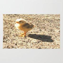 Chick Rug