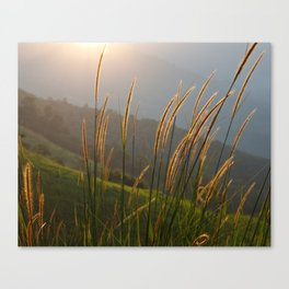 Sunset lover II Canvas Print