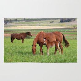 Horse Family Rug