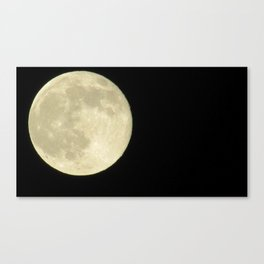 light in the night  Canvas Print