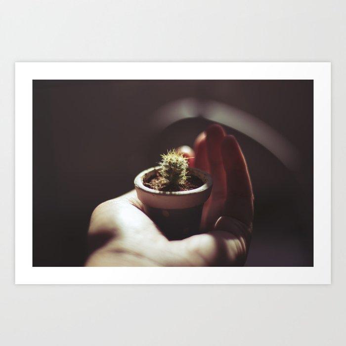 Tiny cactus Art Print by chieminakahara | Society6 on tiny bamboo, tiny moon, tiny trees, tiny earth, tiny plants, tiny blanket, tiny island, tiny succulents, tiny terrariums, tiny tomatoes,