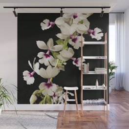 Calanthe rosea Orchid Wall Mural
