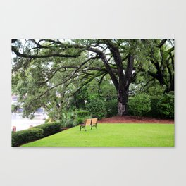 Lovely Spot To View The Sampit River Canvas Print