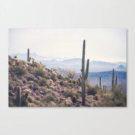 Superstition Wilderness Canvas Print