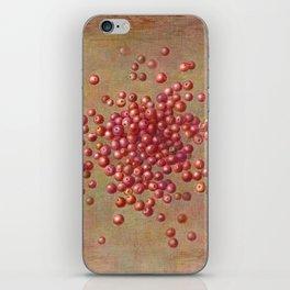 CRANBERRIES iPhone Skin