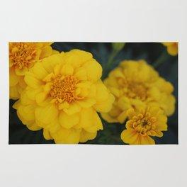 Marigolds Rug