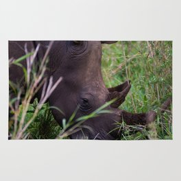 White Rhino in Hluhluwe-Imfolozi Park Rug