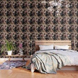 Amos in fur Wallpaper