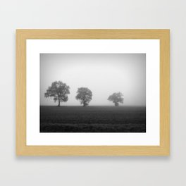 Three In A Row Framed Art Print