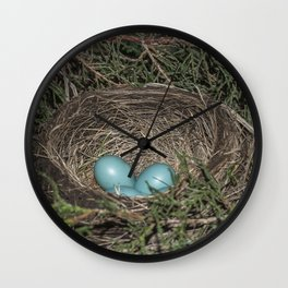 Robins nest with eggs Wall Clock