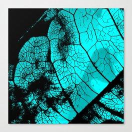 Aqua leaf Canvas Print