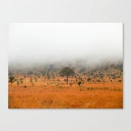 safari fog Canvas Print