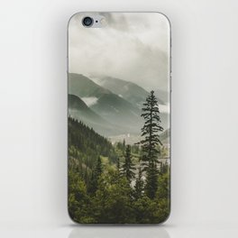Valley of Forever iPhone Skin