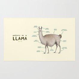Anatomy of a Llama Rug