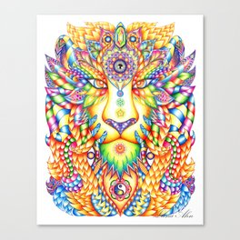RAINBOW WARRIOR Canvas Print