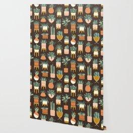 Cacti & Succulents Wallpaper