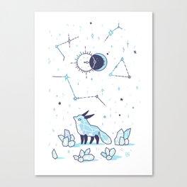 Arctic Nights Canvas Print