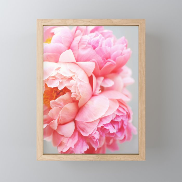 Peonies Forever Framed Mini Art Print