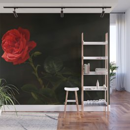 The wild red rose Wall Mural