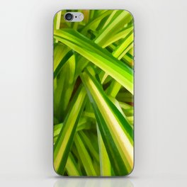 Spider Plant Leaves iPhone Skin