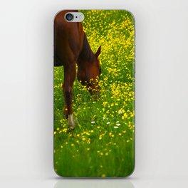 Enjoying The Wildflowers iPhone Skin