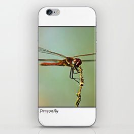 The Spanish Red Dragon Fly iPhone Skin
