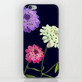 Three Beauties in Black iPhone Skin