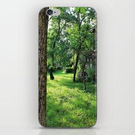 Brasov II iPhone Skin