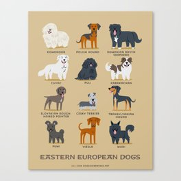EASTERN EUROPEAN DOGS Canvas Print