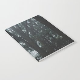 PNW Forest Notebook