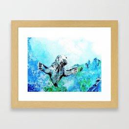 Baby Seal Framed Art Print