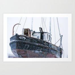 Calanus 7 Art Print
