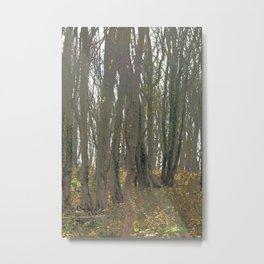 With an eye made quiet Metal Print