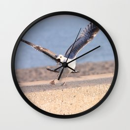 Atacking seagull Wall Clock