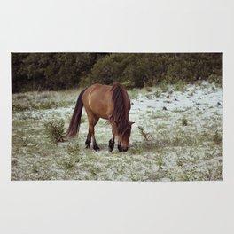 wild pony Rug