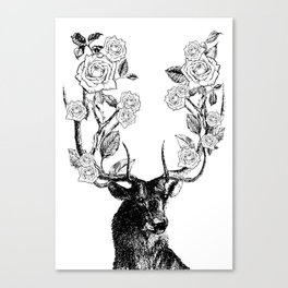 The Stag and Roses | Black and White Canvas Print