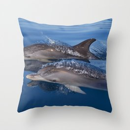 Beautiful Spotted dolphins Stenella frontalis Throw Pillow