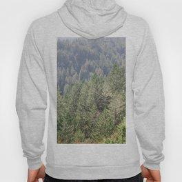 Mt Tamalpais Hoody