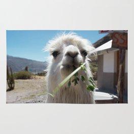 Llama eatin in Peru Rug
