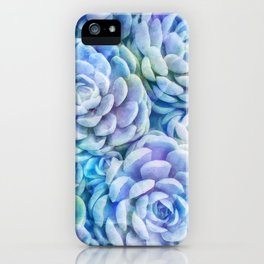 Rainbow succulents iPhone Case